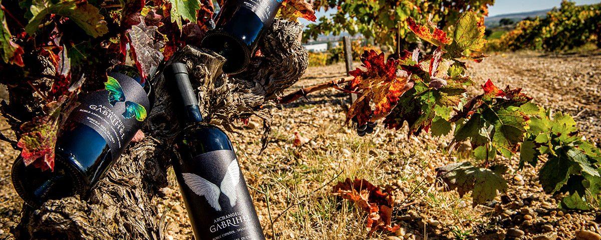 Archangelus Gabrihel botellas vino tinto