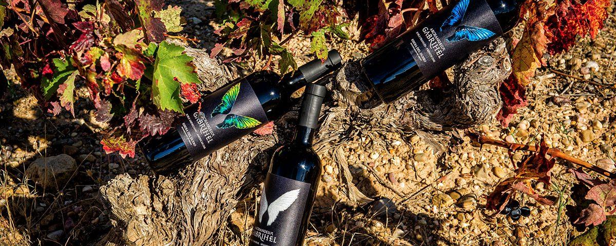 Archangelus Gabrihel botellas vino tinto Ribera del Duero